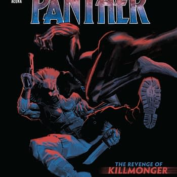 Black Panther #17 [Preview]
