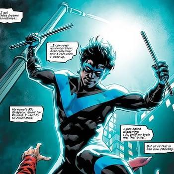 Nightwing - No Longer Ric Grayson