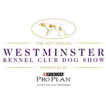 [2018 Westminster Dog Show] TV Spotlight: Sporting Group