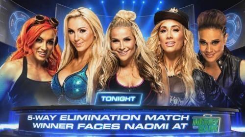 WWE Women's Money in the Bank Ladder Match