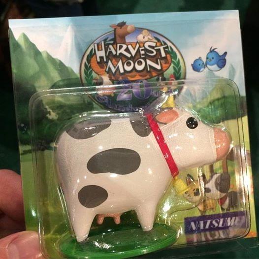 natsume-cow