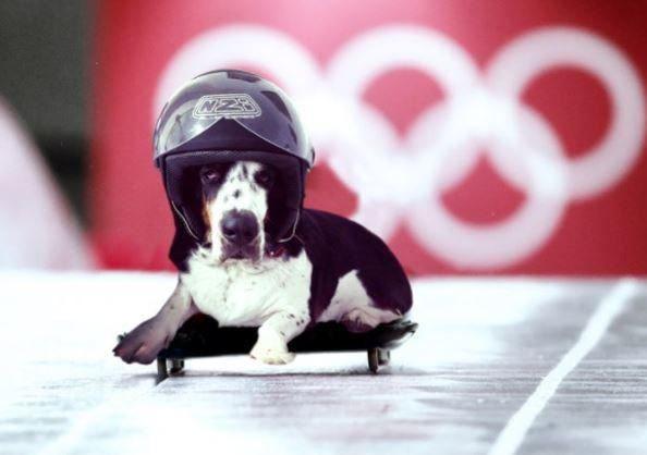 olympics slideapose poses instagram