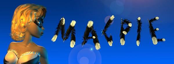 Magpie banner