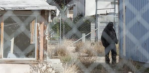 twin peaks episode 11 recap