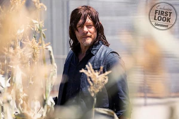 walking dead season 9 daryl image