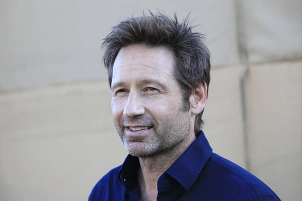 BEVERLY HILLS - JUL 29: David Duchovny at the CBS , CW and Showtime 2013 Summer TCA party on July 29, 2013 in Beverly Hills, California