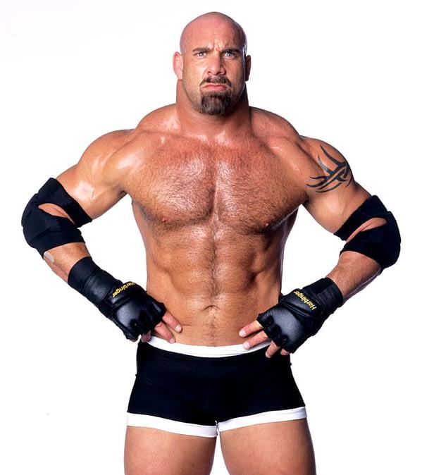 07_WWE-Encyclopedia-351